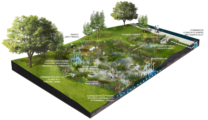 4 7 Ponds And Wet Basins Philadelphia Water Stormwater