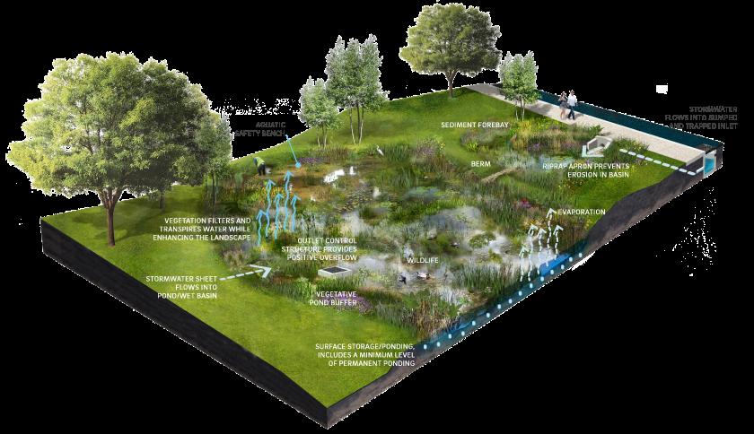 4 7 Ponds And Wet Basins Philadelphia Water Stormwater